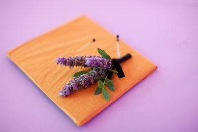 confero_violet_2